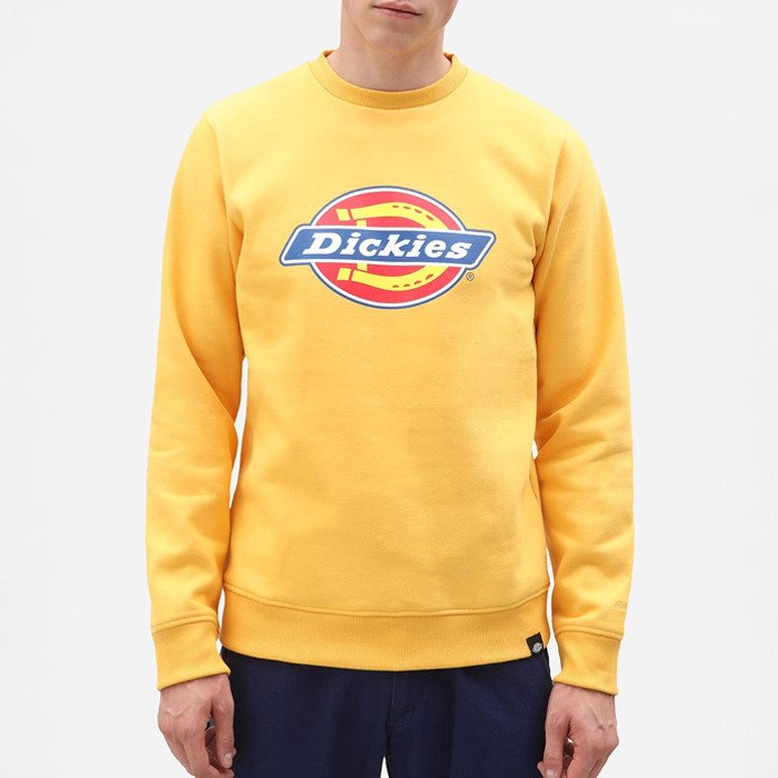 Dickies Pittsburgh 02 200241 AMBER